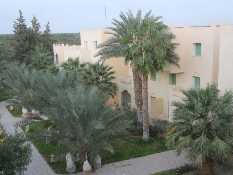 Tunis izlet Sahara