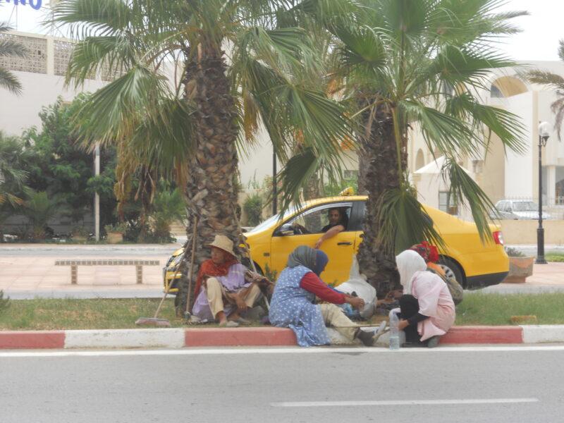 šta videti u Tunisu